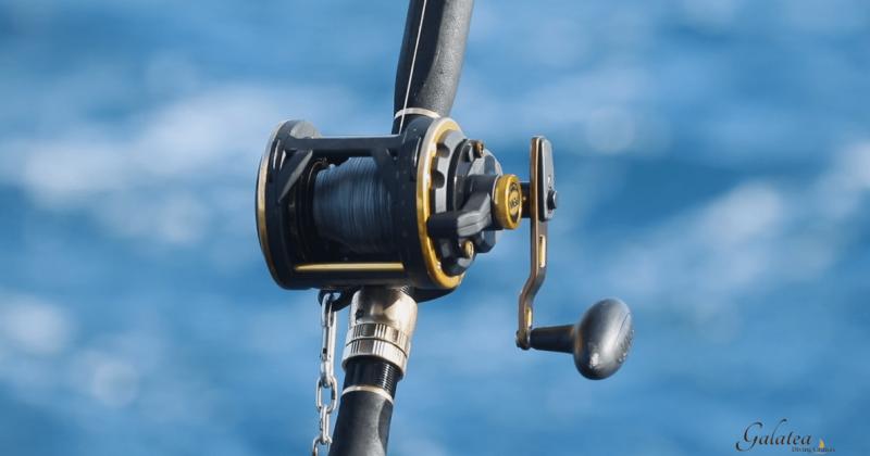 GalaTea-Fishing